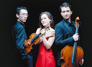 MF14 Amatis Trio