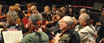 Blackheath Halls Orchestra