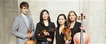 Dulcinea Quartet