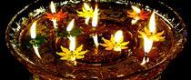 Diwali Evening Celebration