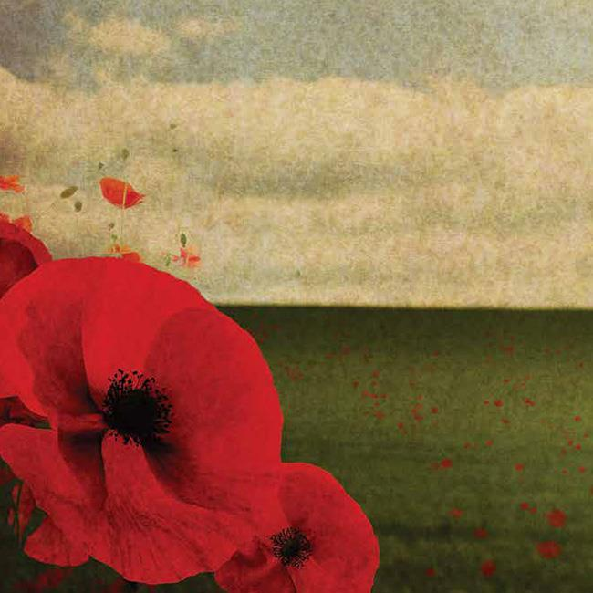 Cheltenham Remembers World War One: A Concert to Mark the Centenary
