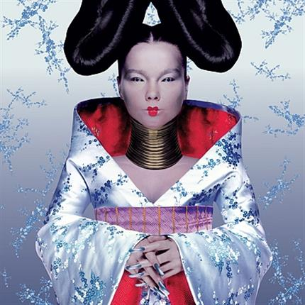 The Vinyl Sessions - Bjork: Homogenic