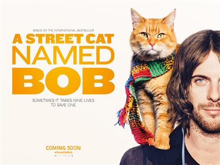 Street Cinema: A Streetcat Named Bob (At The Old Bus Depot, Queen Street)