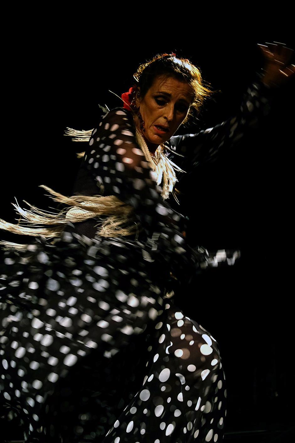 Flamenco Express