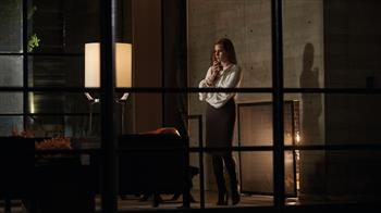 Nocturnal Animals [15]