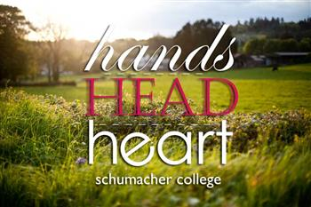 Hands, Head and Heart - Experience Week