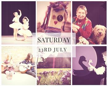 Midsummer Dreams Festival-SATURDAY TICKET
