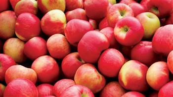 Apple and Cider Weekend
