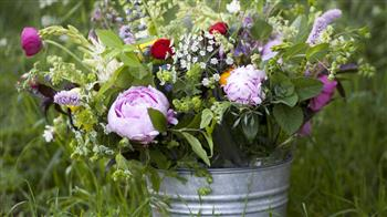 Crafted: Design & Create Your Own Cut Flower Garden - one and a half day course