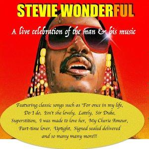 Stevie Wonderful