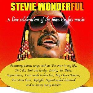 Stevie Wonderful