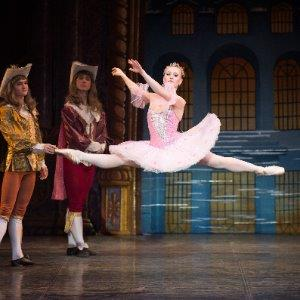 Sleeping Beauty Ballet