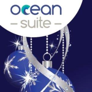 Ocean Office Christmas Party