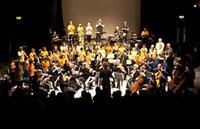 Sinfonia ViVA: Schools Project Concert