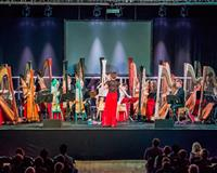 National Youth Harp Orchestra 2018