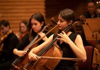 Orchestral Picnic Concert 2020