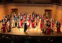 National Youth Harp Orchestra