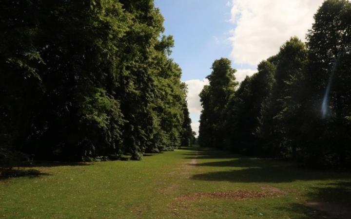 Nowton Park Trail