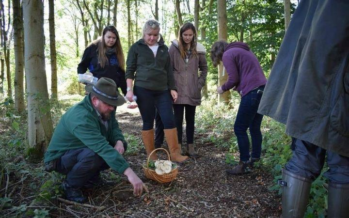 Introduction to Campfire Cooking and Foraging image