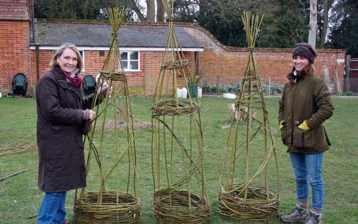 Willow Weaving Workshop image