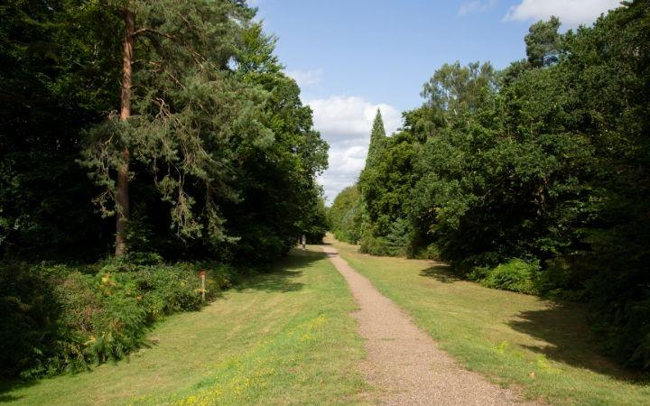 Brandon Country Park's Summer Prize Trail image