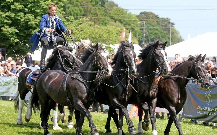 Cancelled - The South Suffolk Show image