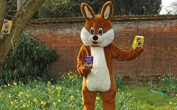 Nowton Park's Amazing Easter Egg Hunt image