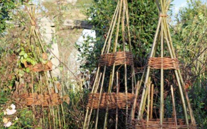 Adults Willow Workshop image