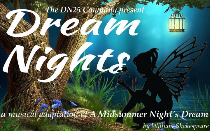 Dream Nights image