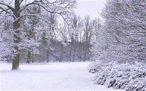 Nowton Park Winter Quiz