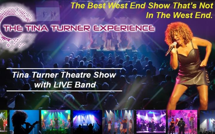 The Tina Turner Experience - European Tour 2019 image