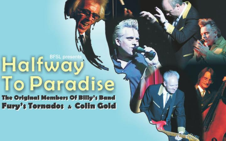 Halfway to Paradise - The Billy Fury Story image