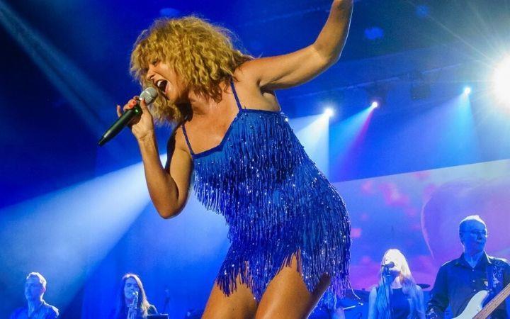 Postponed - The Tina Turner Experience  image