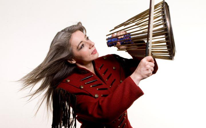 World Doctors Orchestra with Evelyn Glennie image