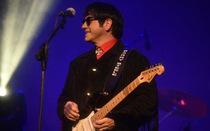The Roy Orbison Story image