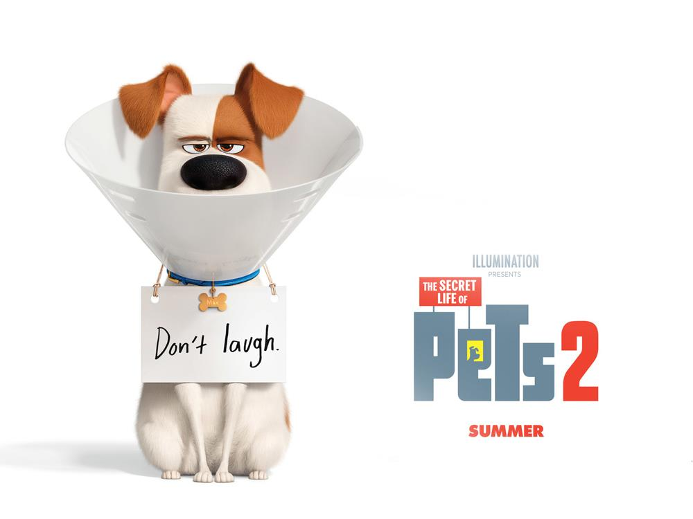 Main image for SMP: The Secret Life of Pets 2 (U)