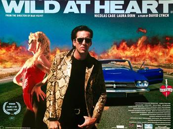 Featured image for Wild at Heart (18)