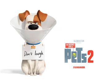 Featured image for The Secret Life of Pets 2 (U)
