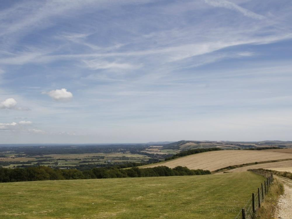 Main image for Saturday Archaeology Walks: Bignor Hill