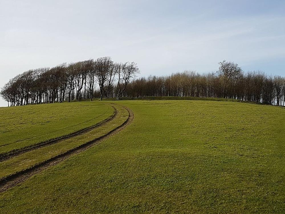 Main image for Saturday Archaeology Walks: Chanctonbury Ring