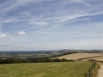 Featured image for Saturday Archaeology Walks: Bignor Hill