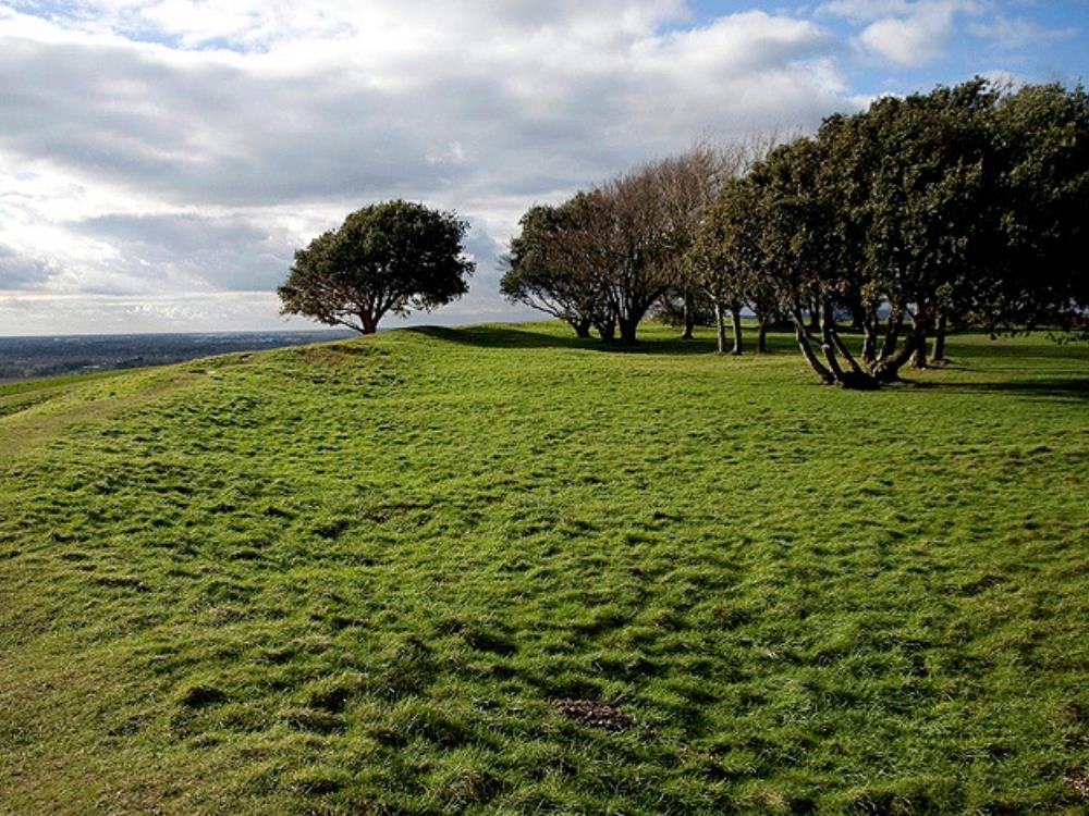 Main image for Saturday Archaeology Walks: Highdown Hill