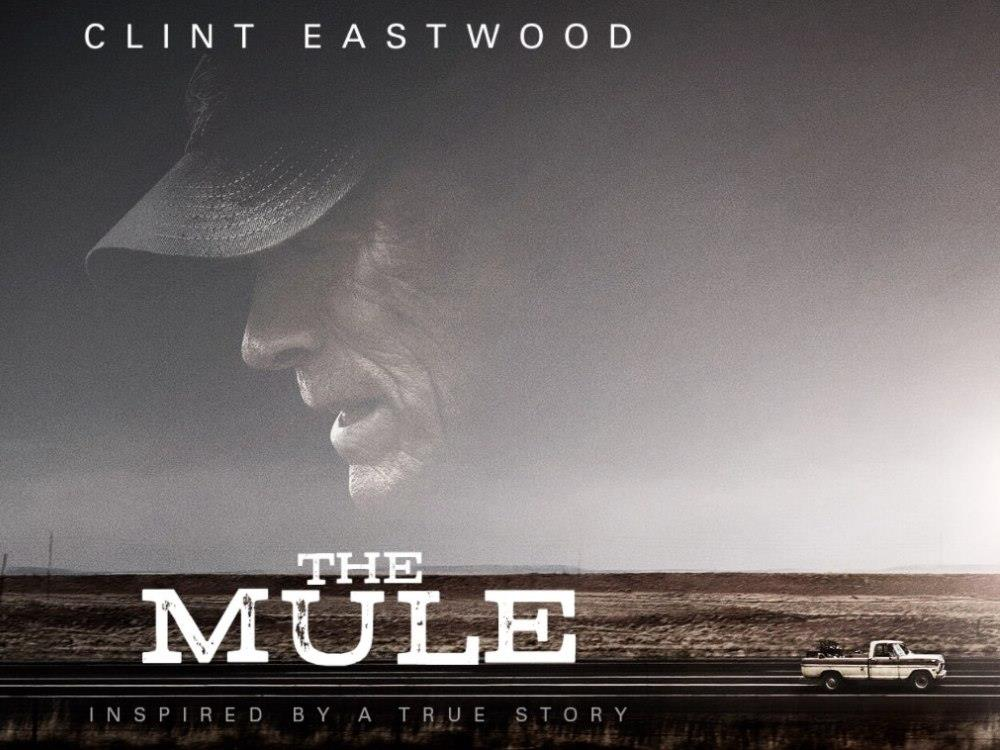 Main image for The Mule (15)