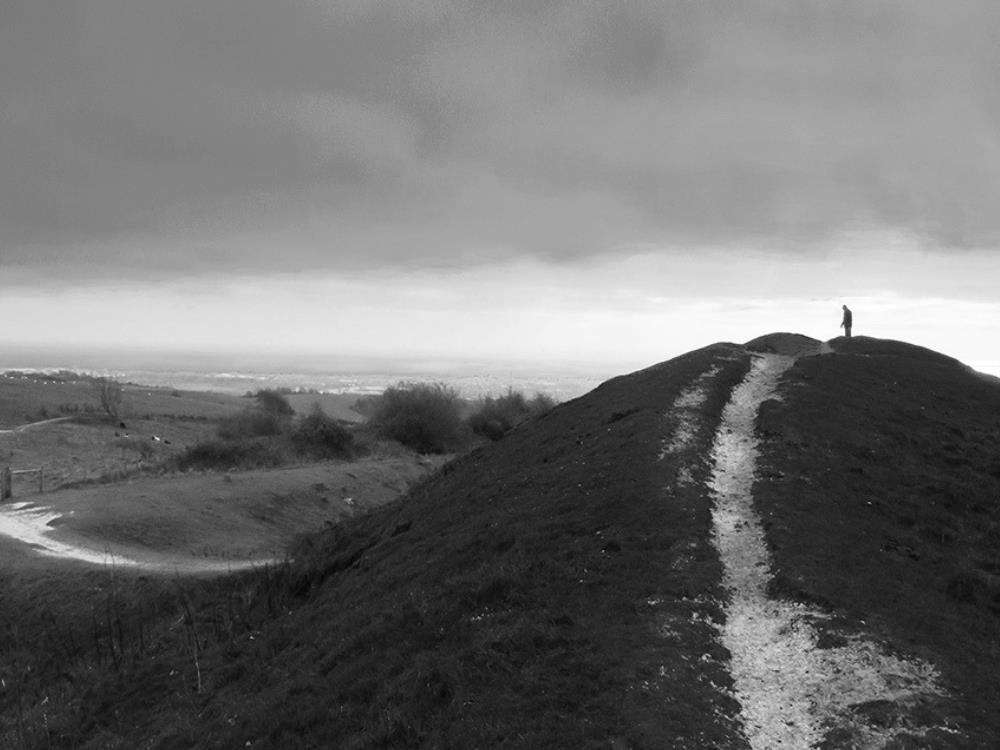 Main image for A Walk Around Cissbury