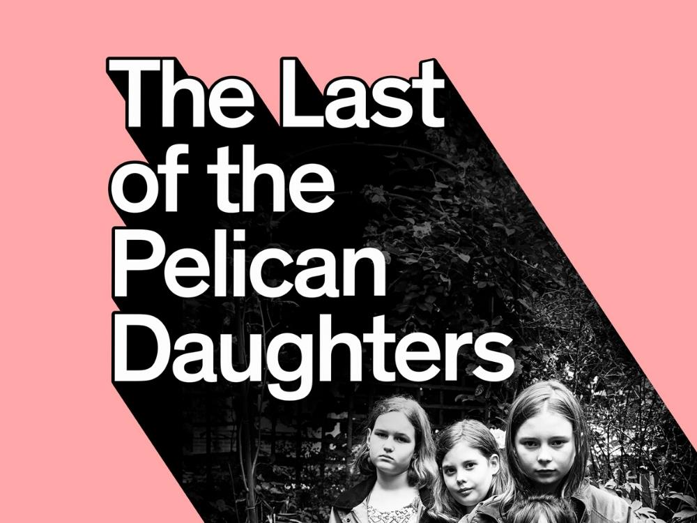 Main image for The Last of the Pelican Daughters
