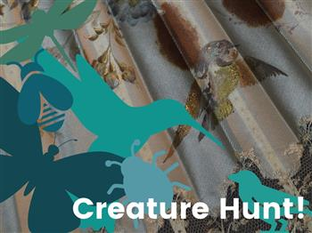 Featured image for Creature Hunt