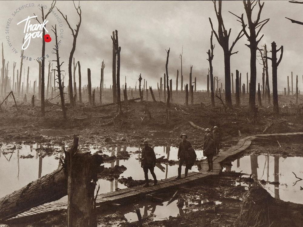 Main image for WWI Centenary: 100 Years